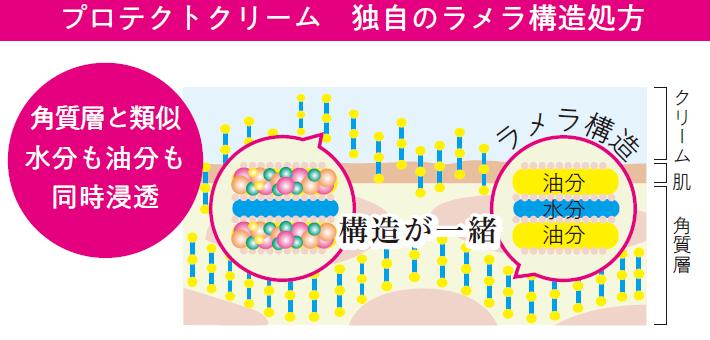 角質層のラメラ構造とクリームのラメラ構造が類似しているため、角質層まで美容成分が瞬時に浸透するとともに、肌の表面をラッピングして水分を逃さないようにできるんですね。