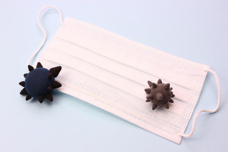 サポニンはアレルギー症状の緩和や免疫力の向上にも役立つので、ウイルス性の流行り病などの感染予防効果も期待できます。